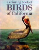 gi-047-coloring book-birds of CA